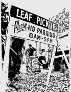 Leaf Pickup No Parking Sign