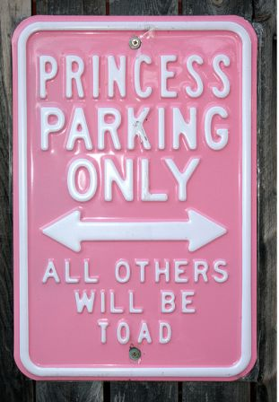 funny princess parking sign