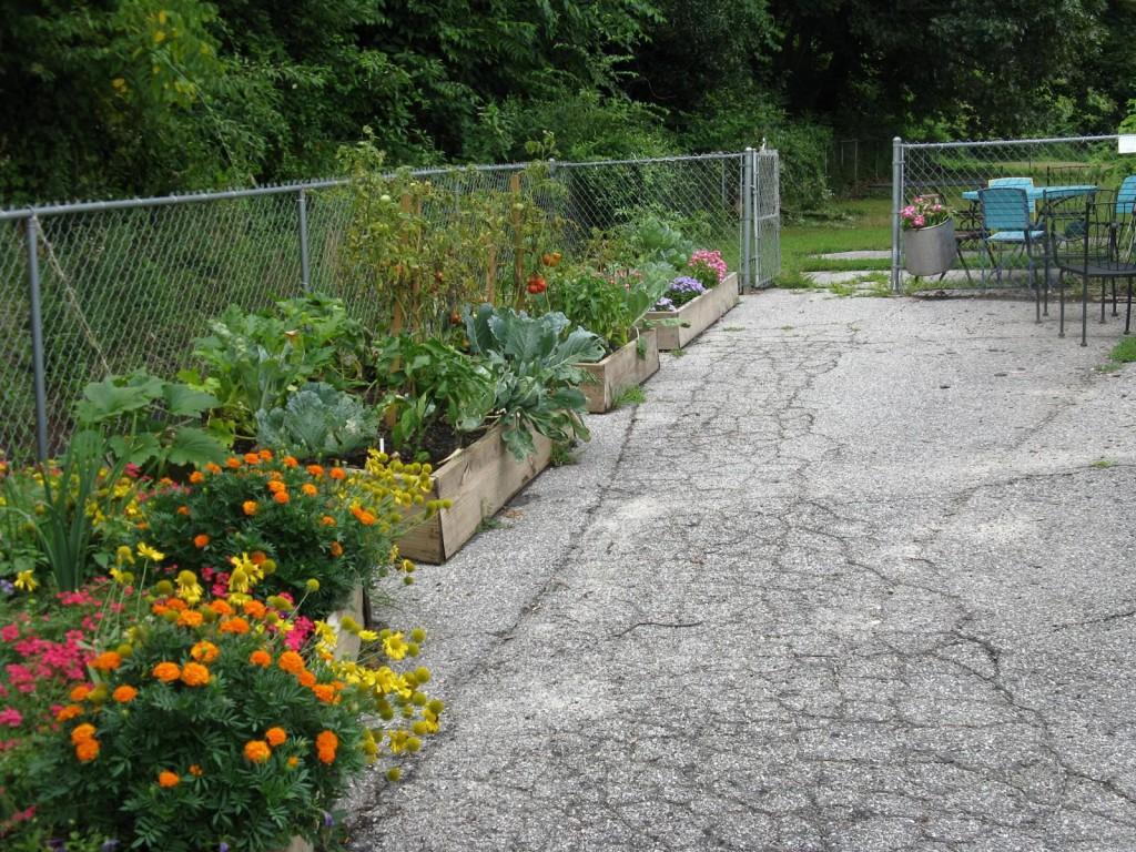 parking lot garden