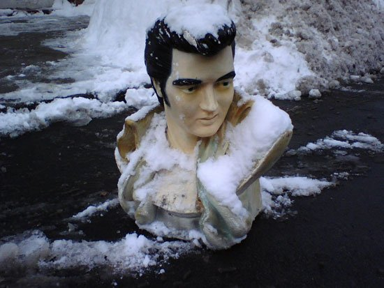 The King of parking space savers: Bust of Elvis Presley (Source: The Boston Globe)
