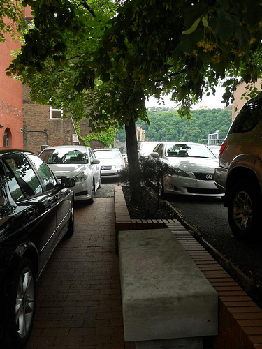 Funny Parking Signs >> California residents look for shady parking spots this ...